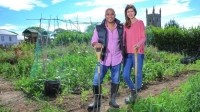 Dig in: The Queen's Arms has worked with Pub is the Hub to create an allotment for the community