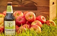 An apple a day: Shepherd Neame launches Orchard View