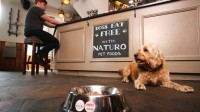 Doggy delicacies will be served up to customer's canine companions for free