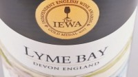 English produce: three gold-medal-winning wines announced as part of first IEWA competition
