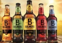 Cider harvest: Bulmers is expecting a good apple crop this year