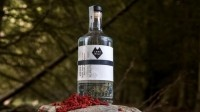 Happy ending: the Wolf bar in Birmingham and BrewDog have teamed up to create a gin